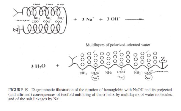 nano protoplasm indution4